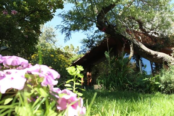 veranda vegetacion y vivienda