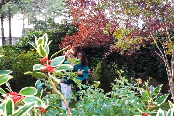 ballota jardin frutos y vegetacion
